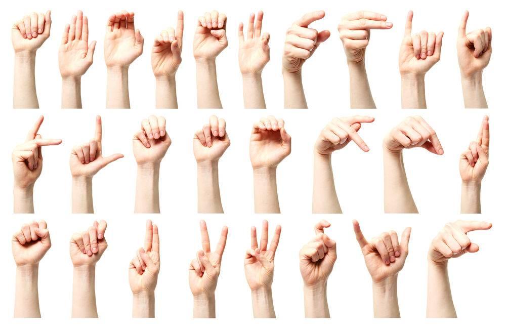 apprendre la langue des signes gr u00e2ce aux gif anim u00e9s